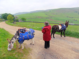 DBS - Trekking with the donkeys