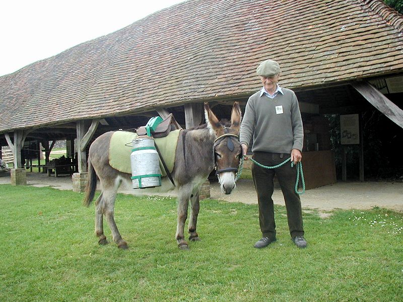 Norman Roger and donkey with pack saddle and urn
